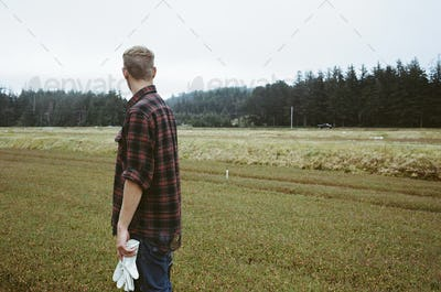 A cranberry farm, young man working on the land, harvesting the crop,