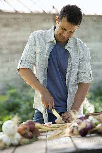 Sorting and chopping freshly picked vegetables and fruits. A man using a sharp knife.