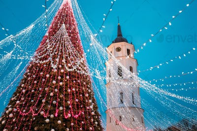 Vilnius, Lithuania. Christmas Tree On Background Bell Tower Belfry Of Vilnius Cathedral In Evening