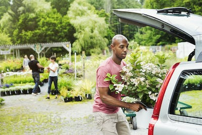 Car parked at a garden centre, a man loading flowers into the boot.