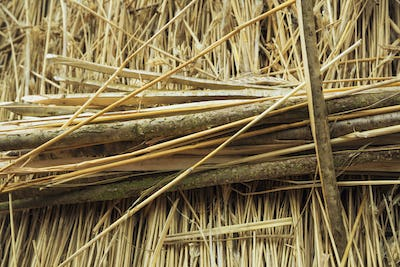 Close up of wooden pegs used to fasten straw on a thatched roof.