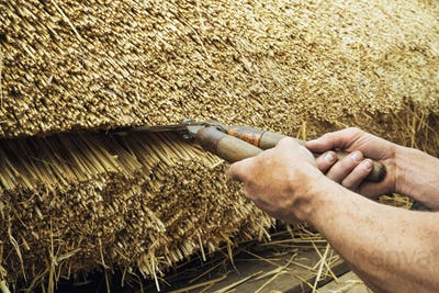 Close up of a thatcher trimming straw of a thatched roof with shears.