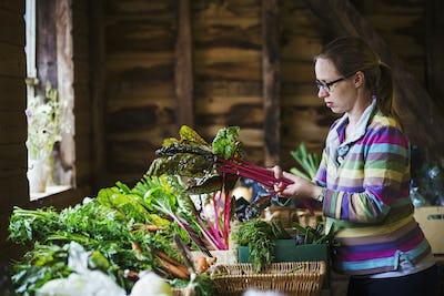 A woman handling organic produce in a farm shop.