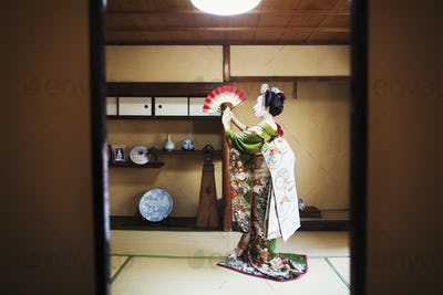 A woman dressed in the traditional geisha style