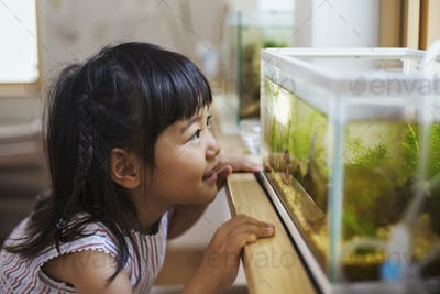 Family home. A girl looking at the fish in a tank on a windowsill.