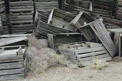 Pile of old and discarded wooden fruit crates, boxes for apple harvest