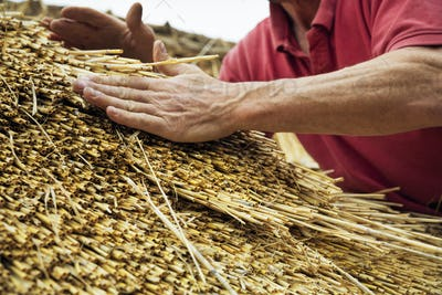 Close up of a man thatching a roof, layering the straw.