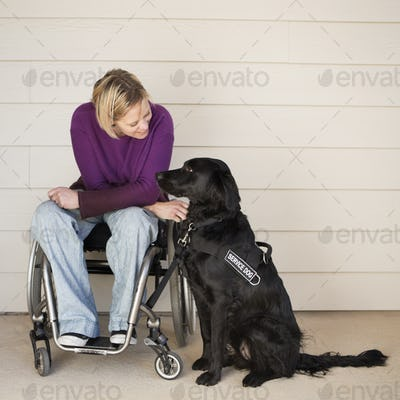 A woman in a wheelchair stroking her black labrador service dog.