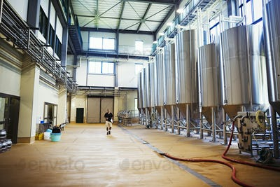 Interior view of a brewery with a row of metal beer tanks.