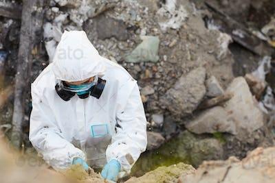 Biologist taking samples of rocks