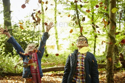 A girl and her brother throwing autumn leaves in the air.