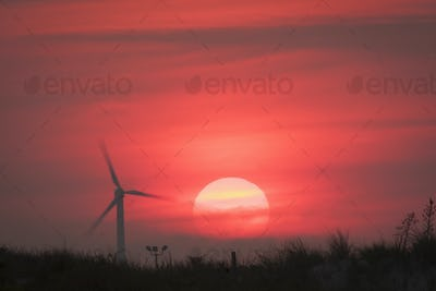 Landscape at sunrise with a wind turbine silhouetted against a red sky.