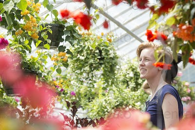 Young woman looking at colourful flowering plants in hanging baskets in a garden centre.