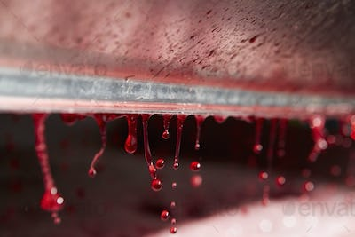 The interior of a grape press with droplets of fresh pressed juice dripping from a roller.