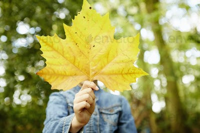 A young girl holding an autumn leaf in front of her face.
