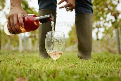 A person pouring rose wine from a bottle into a glass.