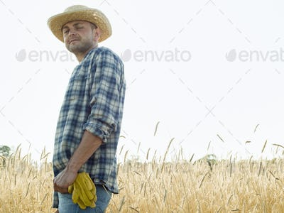Man wearing a checkered shirt and a hat standing in a cornfield.