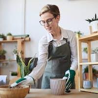 Young Woman Potting Houseplants