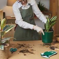Young Woman Enjoying Home Gardening