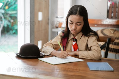 asian girl scout studying at homeasian girl scout studying at home