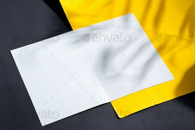 Folded bifold business white card mockup with shadows