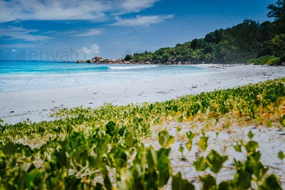 Low angle shot of remote Anse Coco beach, La Digue Island, Seychelles. Pristine blue crystal clear