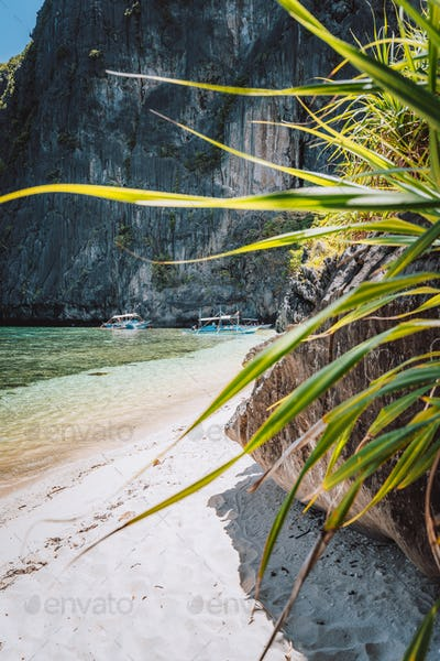 El Nido, Palawan, Philippines. Tropical sandy beach with exotic foliage plants surrounds by karst