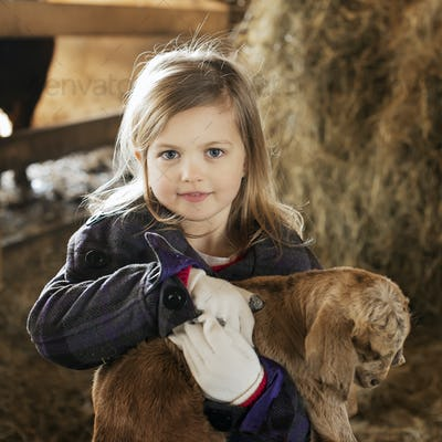 A child in the animal shed holding and stroking a baby goat.