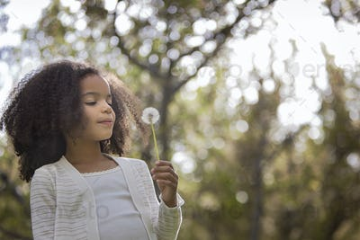 A youn girl holding and blowing a dandelion seedhead clock.