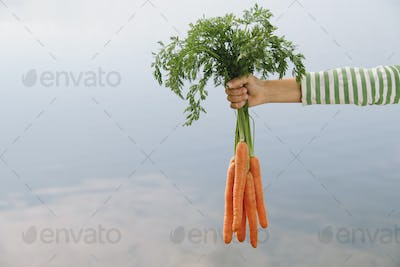 Nine year old girl holding organic carrots