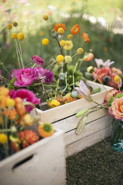 A wooden box of fresh flowers, delicate and brightly coloured blooms. Orange, pink and purple.