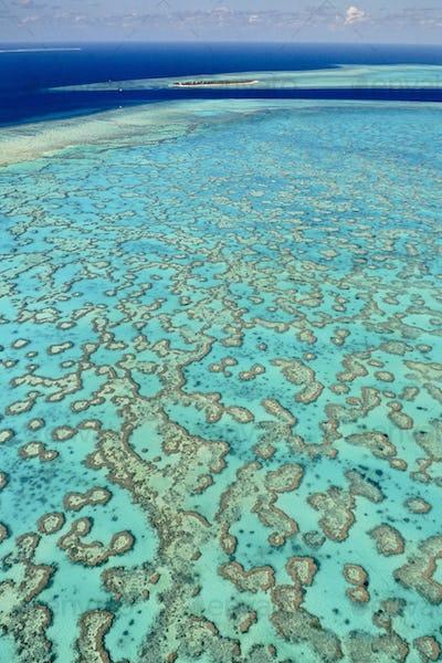 Coral reefs (aerial), Great Barrier Reef, Australia