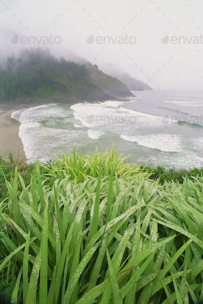 Heceta Head is a headland on the Pacific coastline of Oregon.