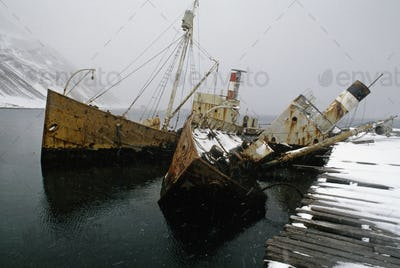 Whale catcher boats sunk at the moorings at Grytviken, South Georgia Island