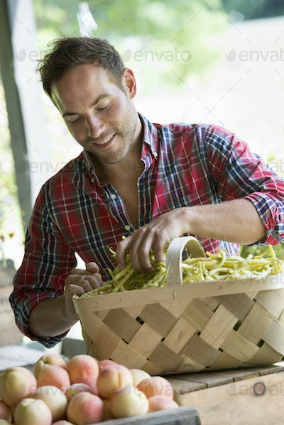 A farm stand with fresh organic vegetables and fruit.  A man sorting beans in a basket.