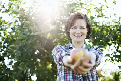 A woman in a plaid shirt holding a freshly picked apple in her two hands from the tree