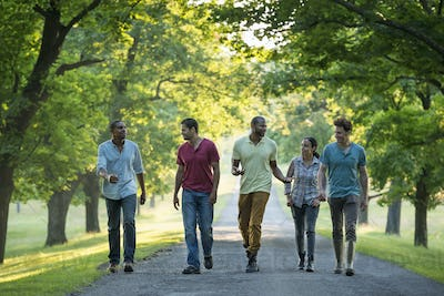 Five people walking down a tree lined avenue in the countryside.