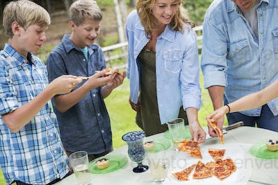 Organic Farm. An outdoor family party and picnic. Adults and children. Plate of pizza.