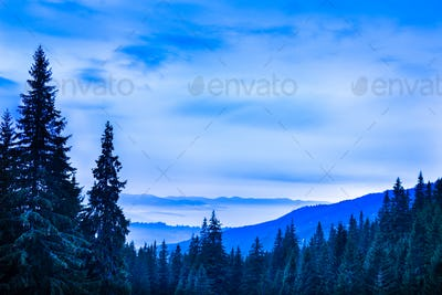 Beautiful scenic landscape of winter mountain forest