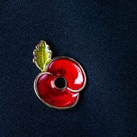 Red Poppy Pin as a Symbol of Remembrance Day