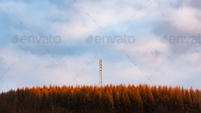 New tower build on the hill in forest rady for3G 4G LTE Radio Mast in a Rural Location