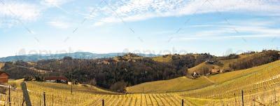 Panorama of Vineyards. Leibnitz area south Styria travel spot