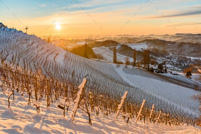 View over the the vineyards an the foggy valleys of slovenia south Styria Sustria Libenitz