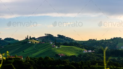 Styrian vineyard in Austria