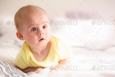 Cute infant girl on bed on belly lifting head looking towards camera
