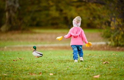 Portrait of adorable baby girl holding yellow leaves and chasing wild duck in autumn park.