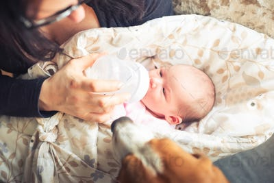 Mother is feeding newborn baby. A woman feeds a newborn with modified milk from a bottle. Top view