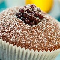 Muffins chocolate dessert