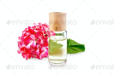Oil with pink geraniums in glass bottle