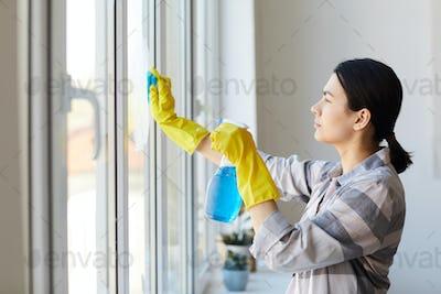 Housekeeper doing chores